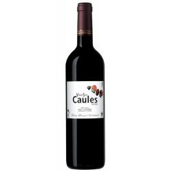 Vinya Son Caules 2007 vin rouge - Vins Miquel Gelabert