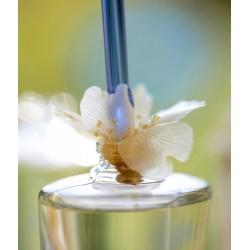 Flor d'Ametler DESIG 125 ml (Edició limitada). Perfum