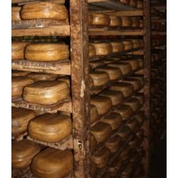 Mallorca hærdet ost - Grimalt