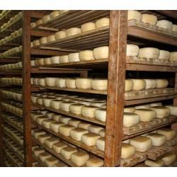 Mallorca ost semi - Grimalt