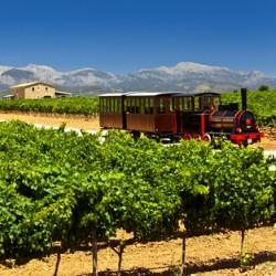 Mallorca, tour del vino in treno