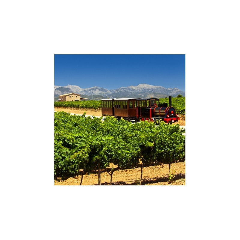 Mallorca, vinresa med tåg
