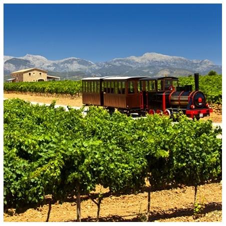 Mallorca, vin tour med tog