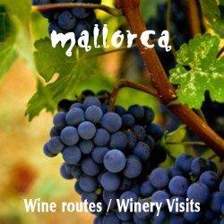 excursió, ruta del vi, tinerari Binissalem, tast de vins